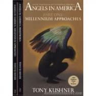 angels_america_gay_fantasia_national_themes