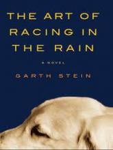 art_racing_rain